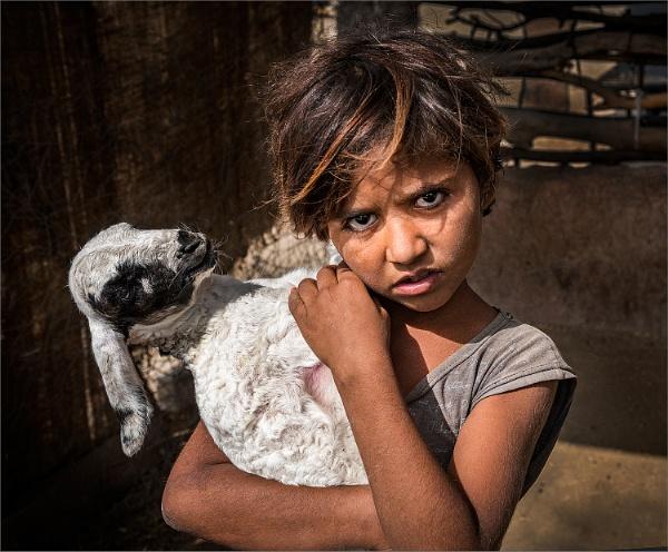 Pet goat by PhilScot