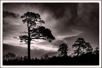 Shores of Loch Tulla