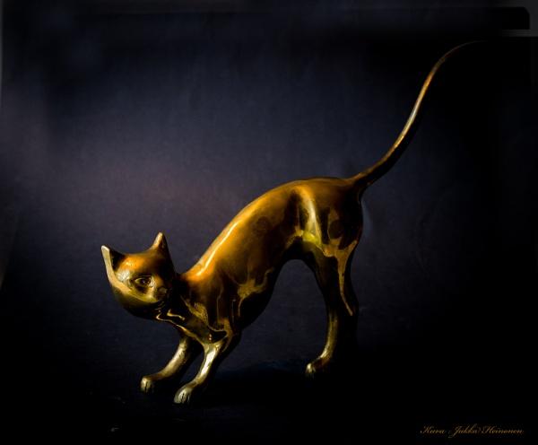 Brass cat. by Jukka