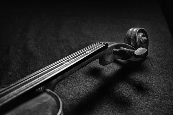 Violin shadows by deavilin
