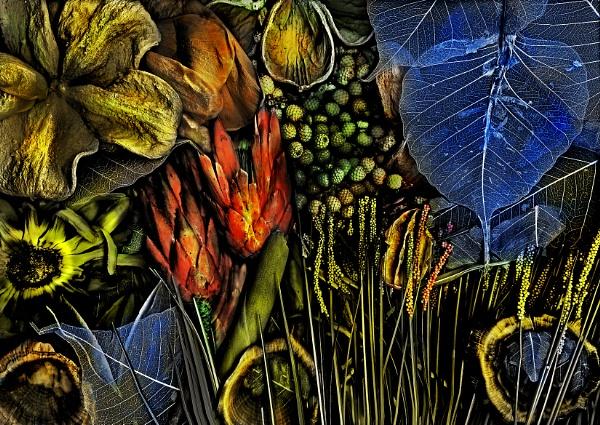 Magic Garden jungle by mtuyb