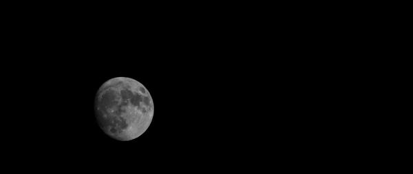 Moon by Madoldie