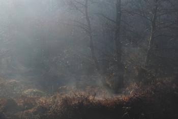 Smouldering mist