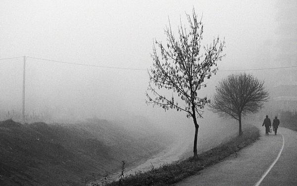 fog promenade by LaoCe
