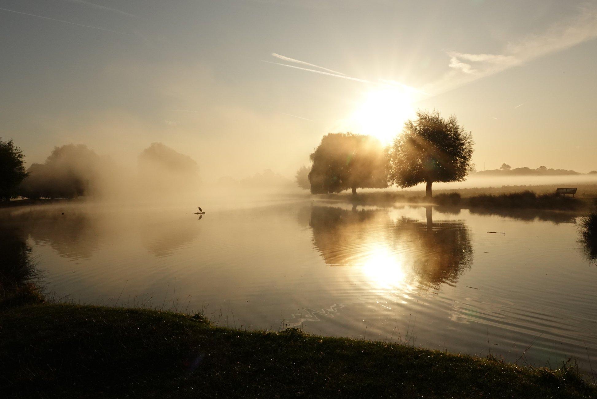 all alone on a misty day