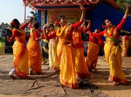 Basant Utsav (Holi / Spring Festival)..6