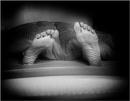 Need a longer duvet... by saltireblue