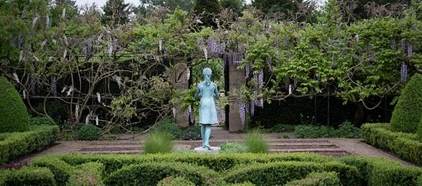 Statue with Wisteria by RolandC