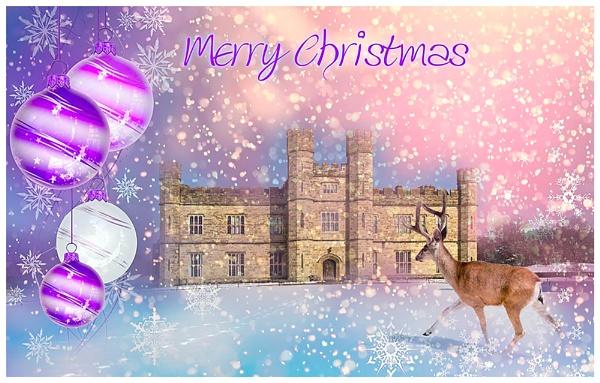 Christmas greetings by capto