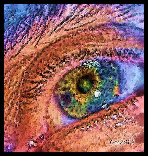 Eye Logo by DonSchaeffer