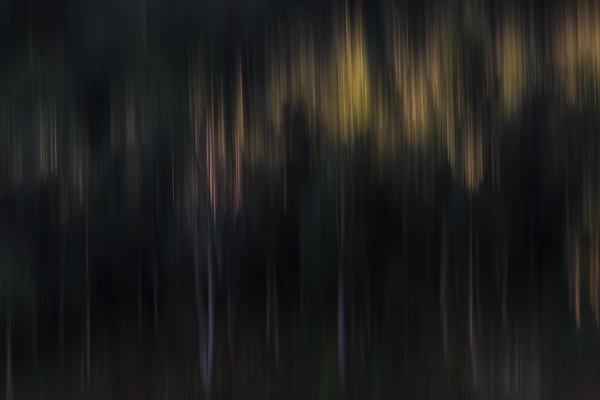 Last Light by jyotirmoy