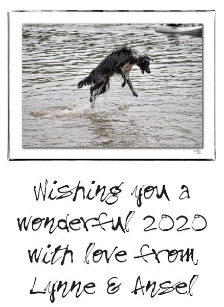 2020 Calendar by LynneJoyce