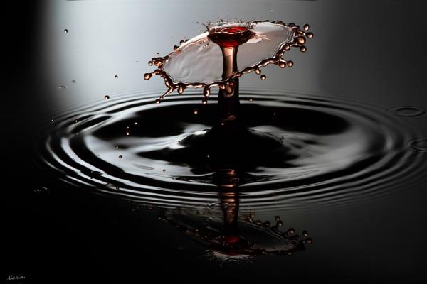 Splash by neilrwalker