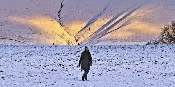 mountain sunbeam by pks