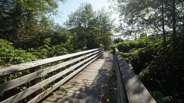 The wooden footbridge