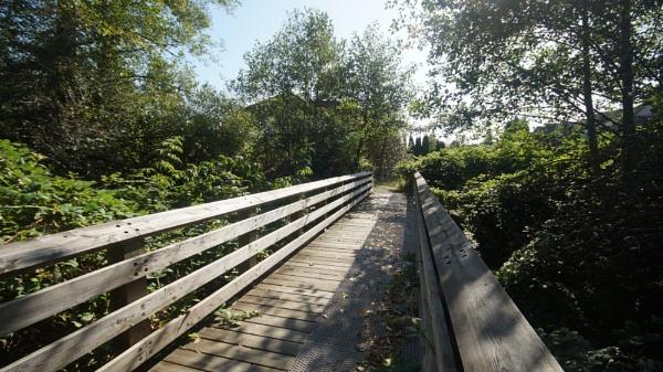The wooden footbridge by MentorRon