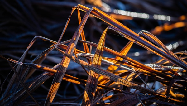 Triangles by Danny1970