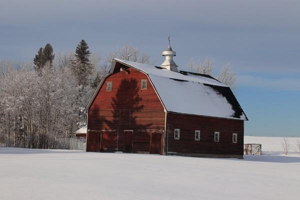 Five o\'clock shadow on  the barn by waltknox
