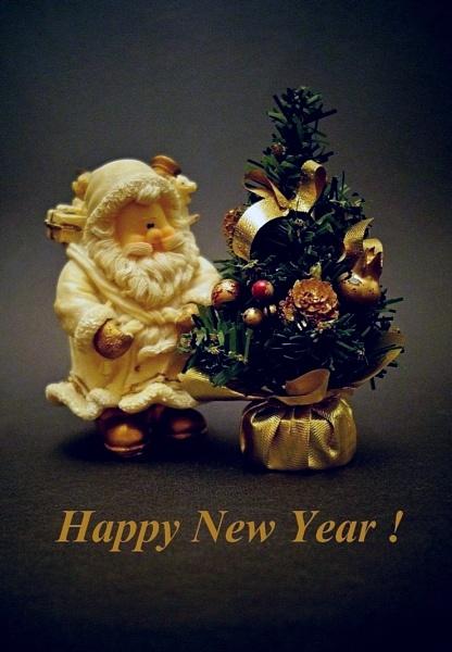 Happy New Year Everyone ! by leo_nid