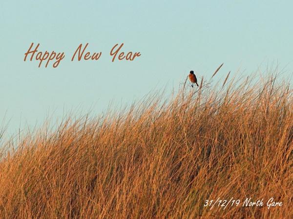 Happy New Year by oldgreyheron