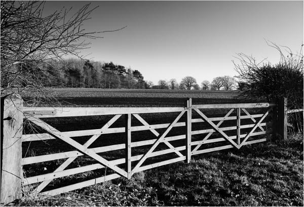 Gate 1 by dark_lord