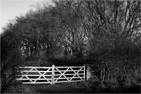 Gate 3 by dark_lord