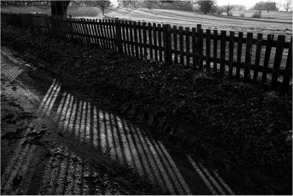 Fence Shadows by dark_lord