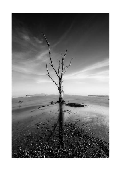 Low Tide by Legend147