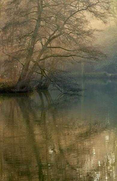 Westwood Lake by JJGEE