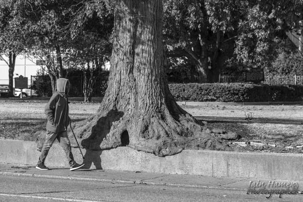 Memphis walker by IainHamer
