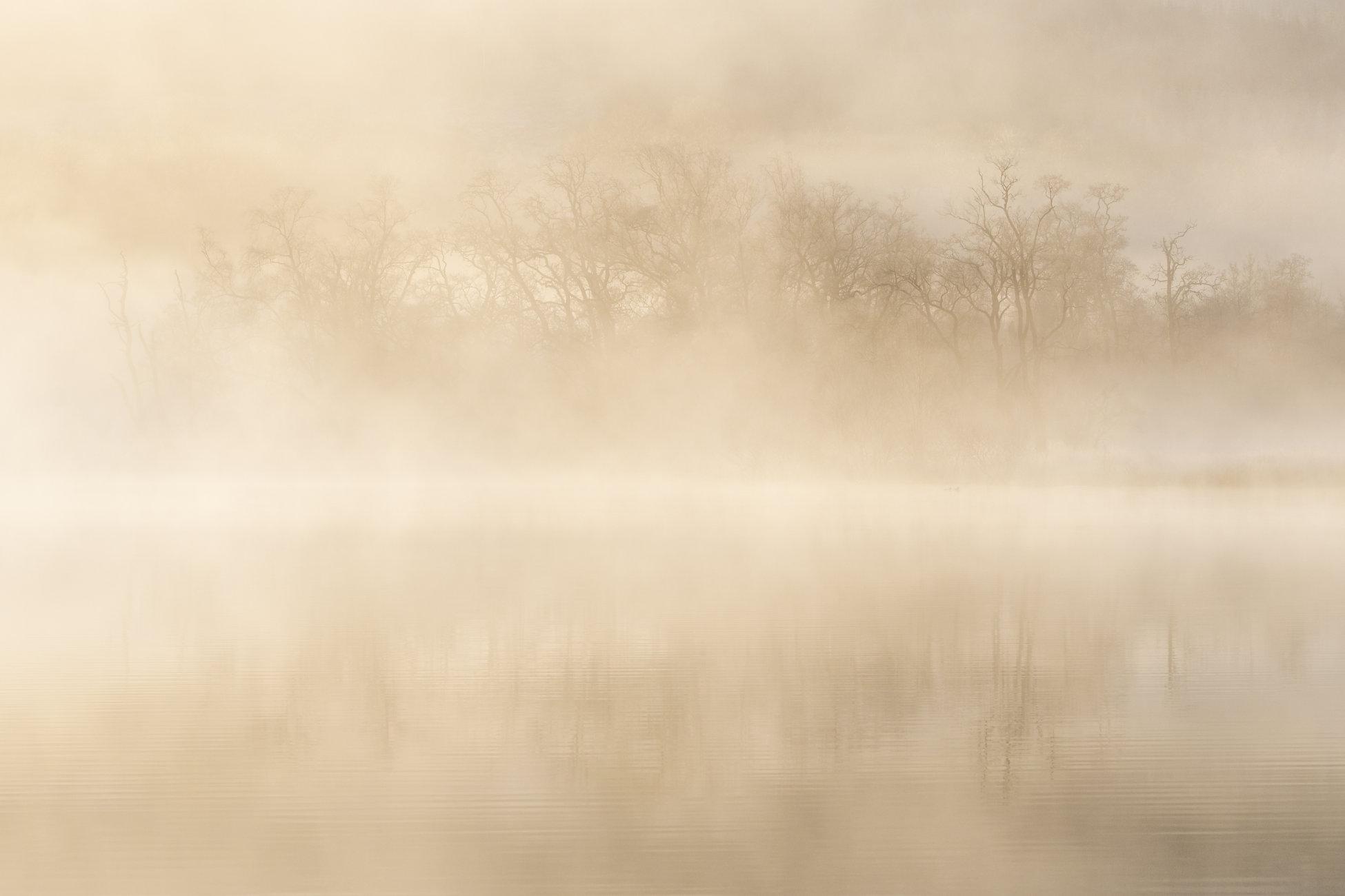 Misty Hogmany Morning