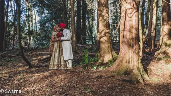 Love is in the air... by Swarnadip