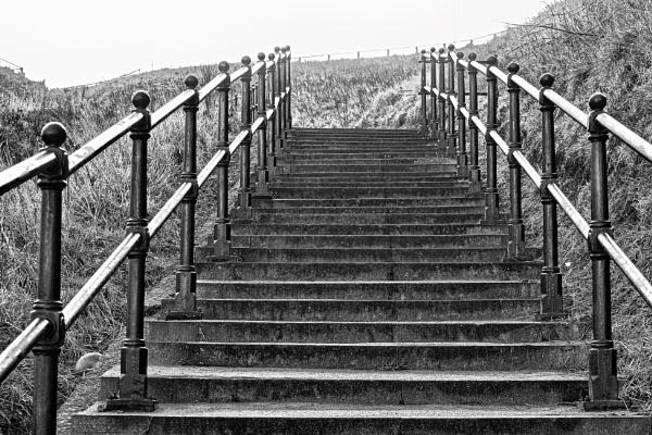 STEPS. by kojack