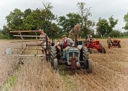 Grandfathers Farm