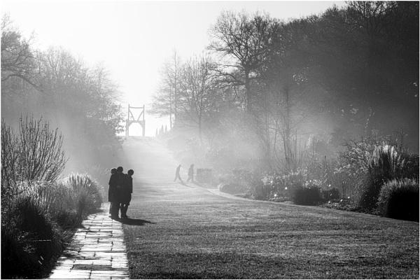 Misty Morning Mono by capto