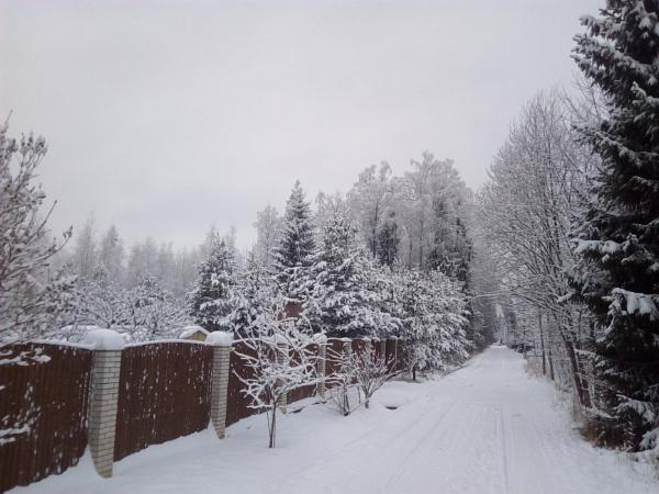 Snowy... by Inky0studios