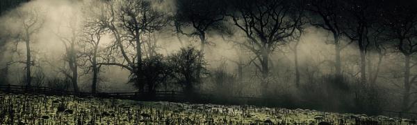 The misty Esk by JimL