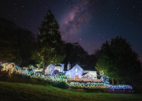 Fairy Lights by Rorymac