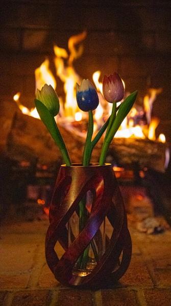 Tulips by The Fire by Merlin_k