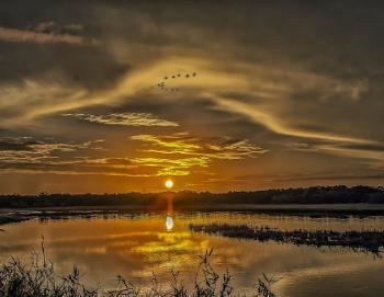 Sundown at Myakka Lake