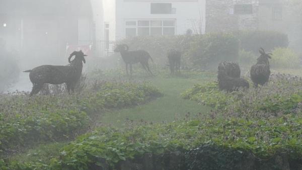 Wicker sheep by blackgreyhound