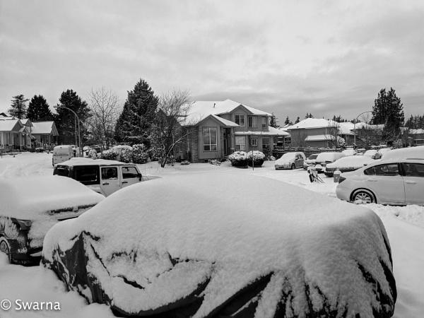 Snow Day... by Swarnadip
