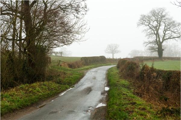 Wintry Lane 2 by dark_lord