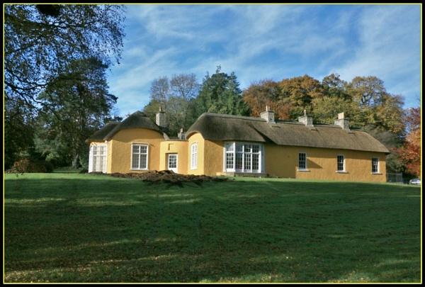 Yellow House by gunner44