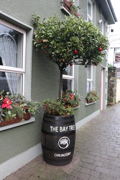 The Bay Tree by gunner44