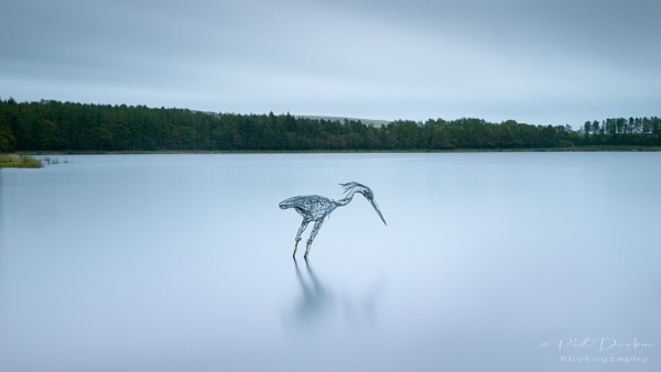 The Heron by Philpot