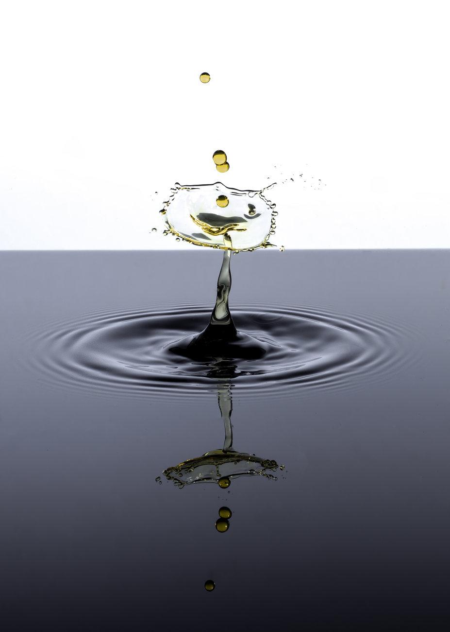 The Gold Splash