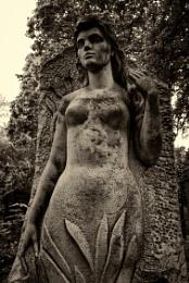 cemetery #11