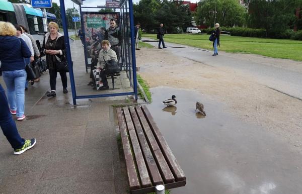 They found very strange lake by SauliusR
