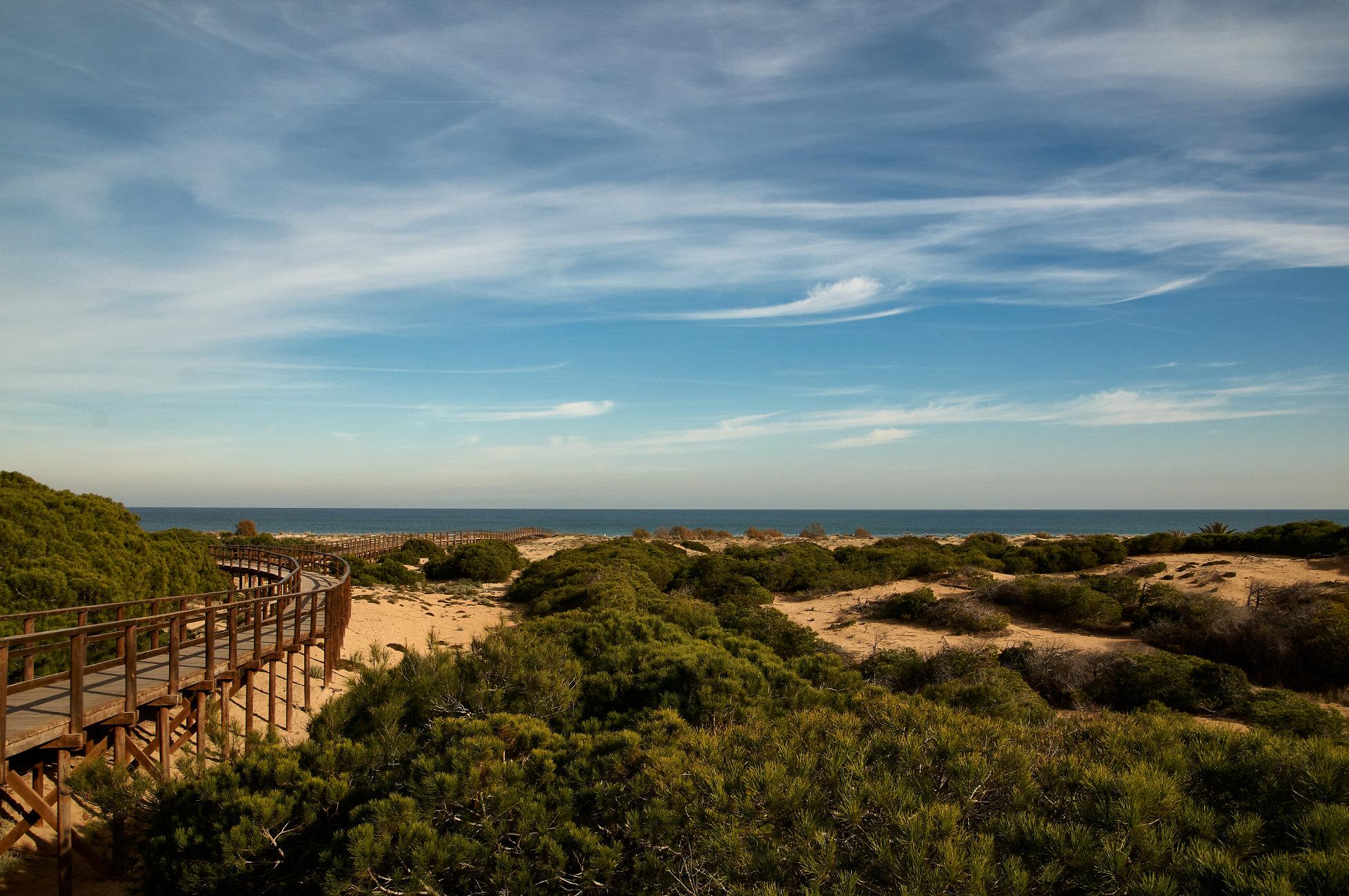 Sand dunes un Alicante